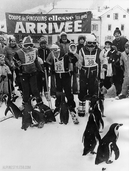 penguins-ski-les-gets