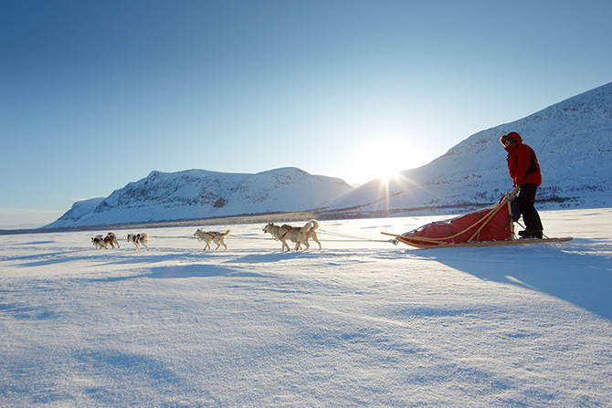 lars schneider outdoor visions photo dogsled norway øvre dividal park