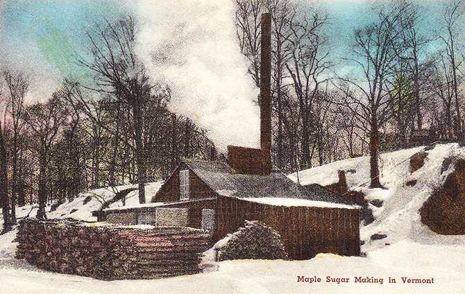 vermont maple sugar sugaring syrup season vintage postcard
