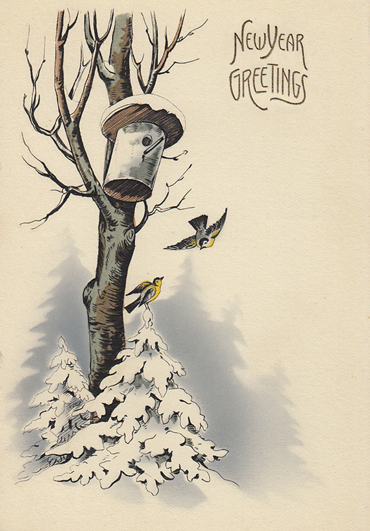 new year greetings birds post card germany vintage