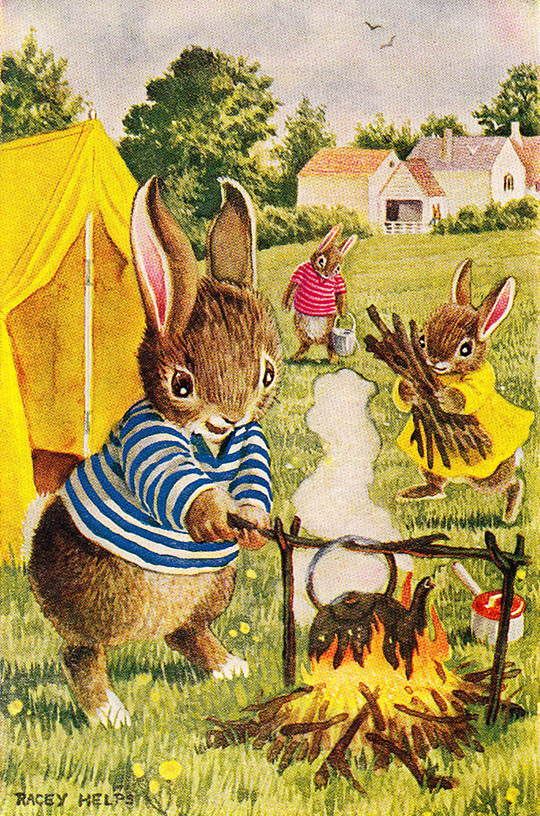 racey helps the campers bunny rabbit camp fire